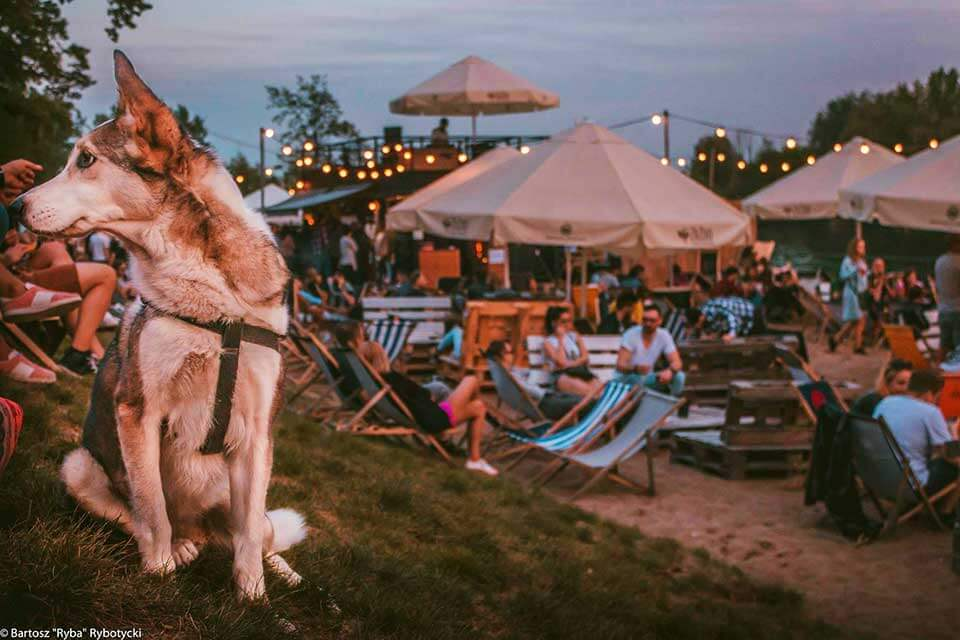 zazoo chillout beach bar wroclaw 10
